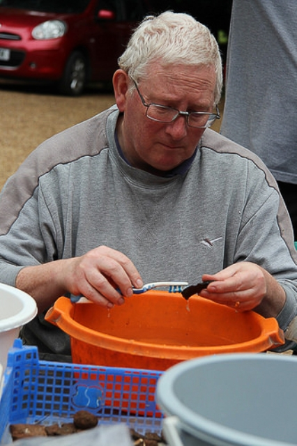 Washing a Roman pot sherd