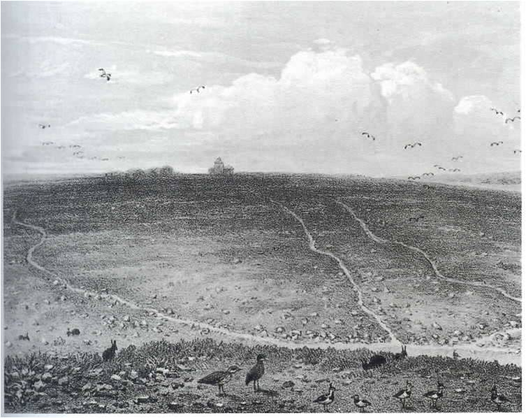 View of Downham Warren