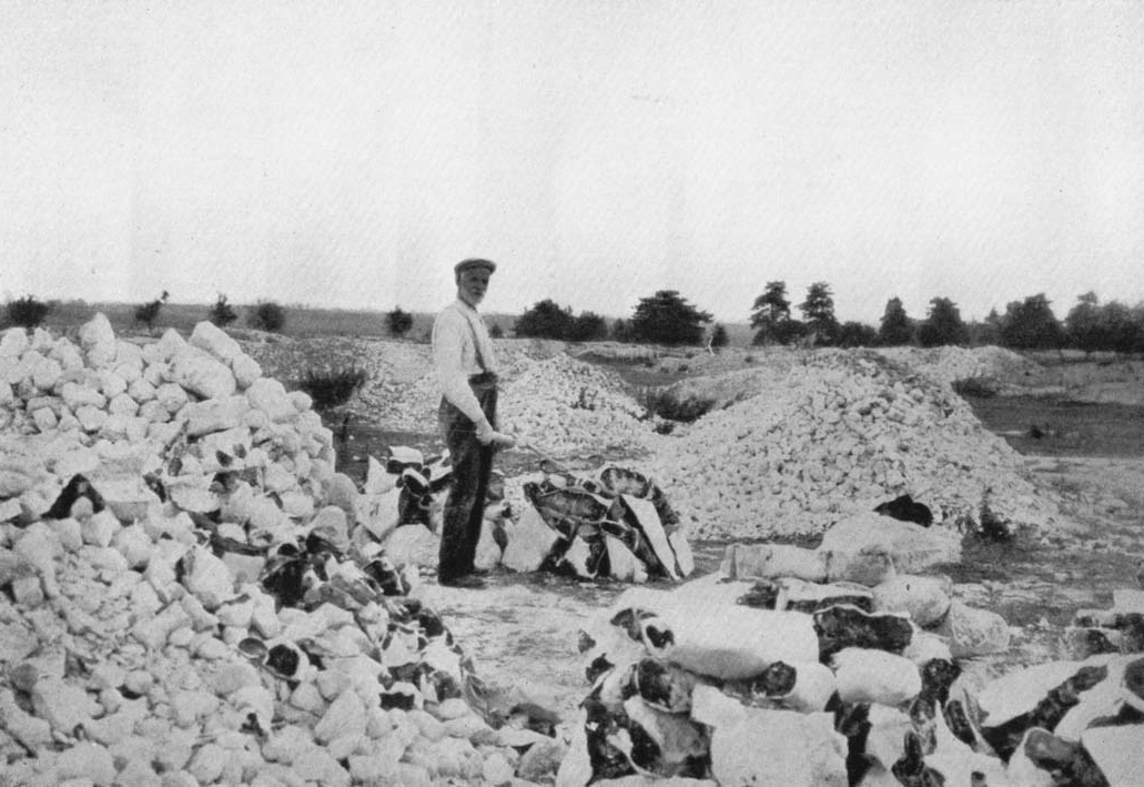 Lingheath Flint mines